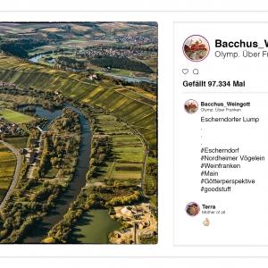 Weingott Bacchus p(r)postet aus dem Olymp